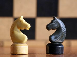 Chess Horse Wallpapers 01